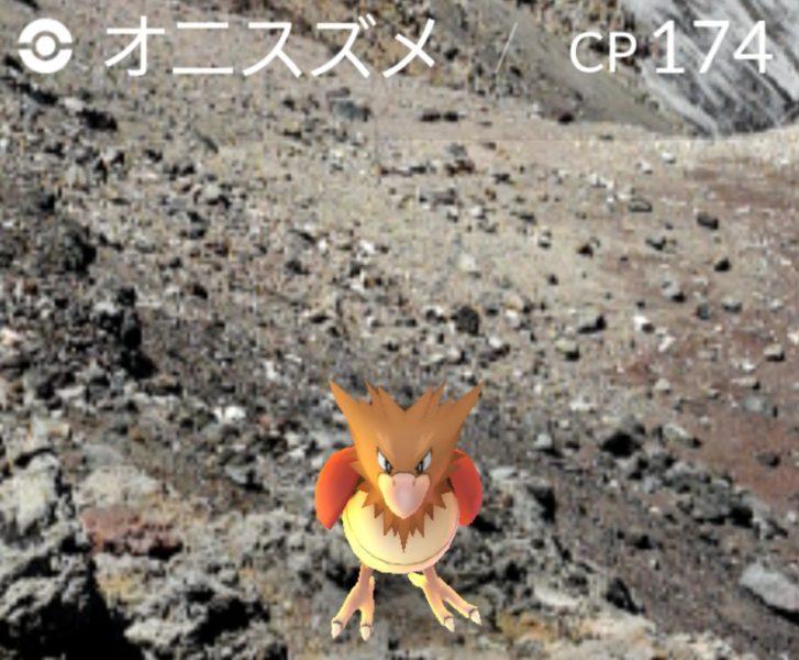 富士山頂のポケモン