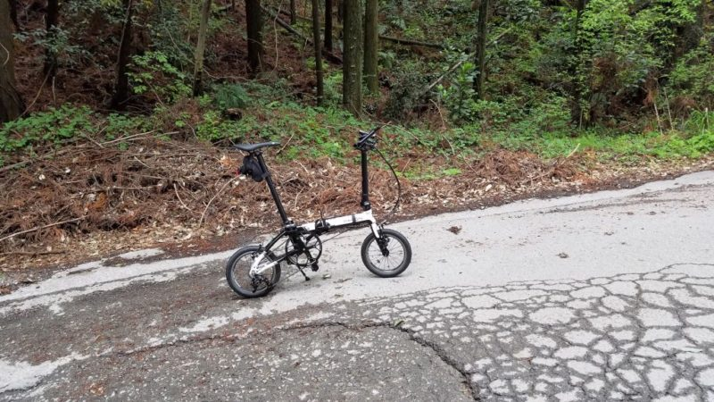 二ツ塚峠付近の脇道